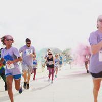 RGT8 Color Run
